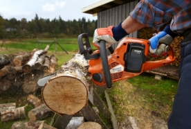 Аренда профессионального оборудования для сада